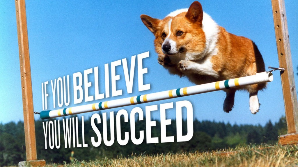 Corgie-If-you-believe-You-will-succeed