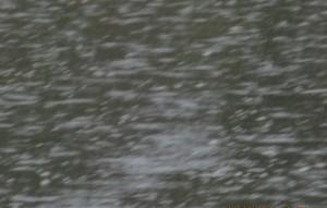 JO's rain on Sepulveda