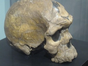 Our early Homo sapien ancestors shagged Neanderthals and any related species, looking past superficial differences. Maybe we're not as advanced as we think.