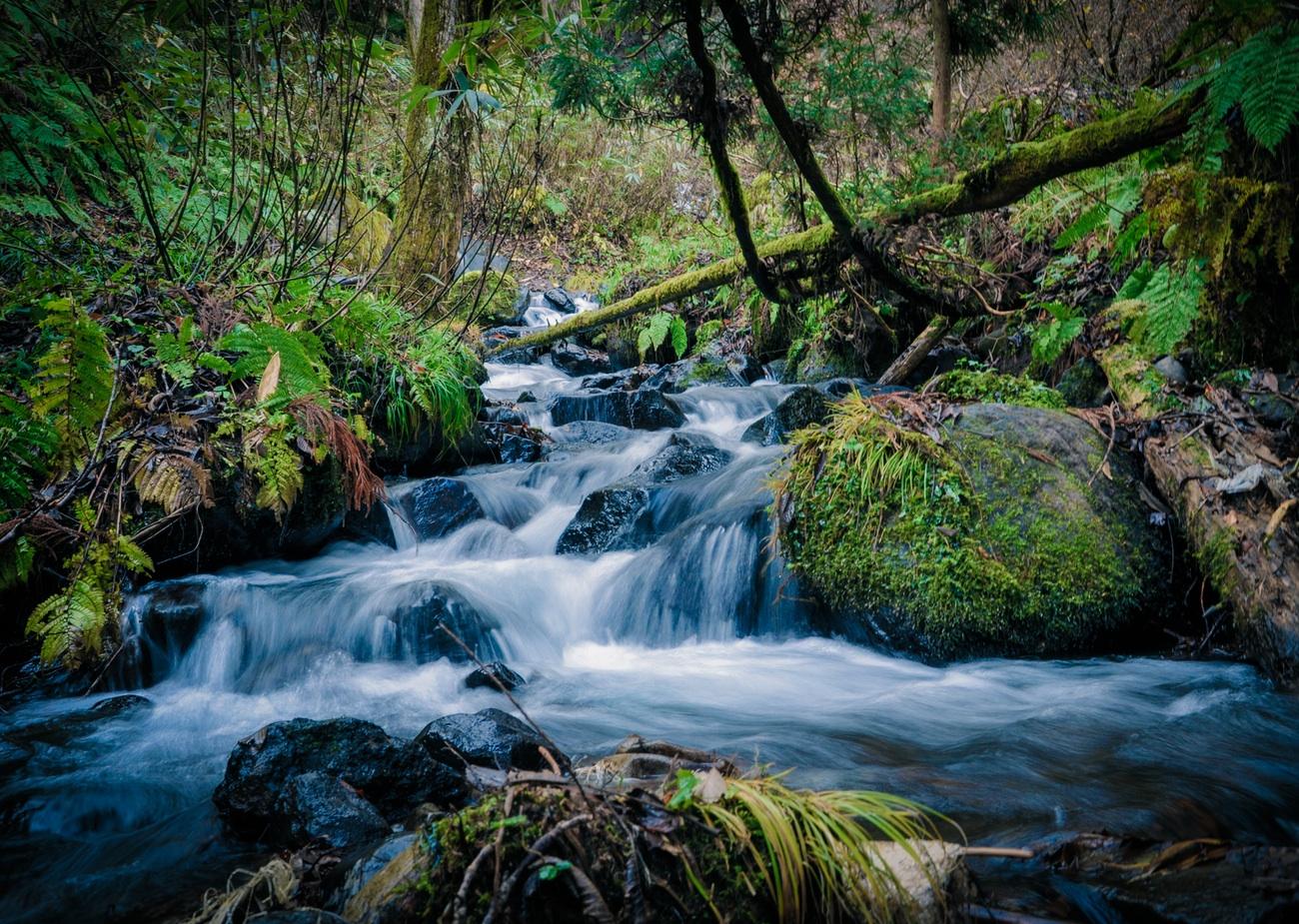 steve austin found God in a waterfall