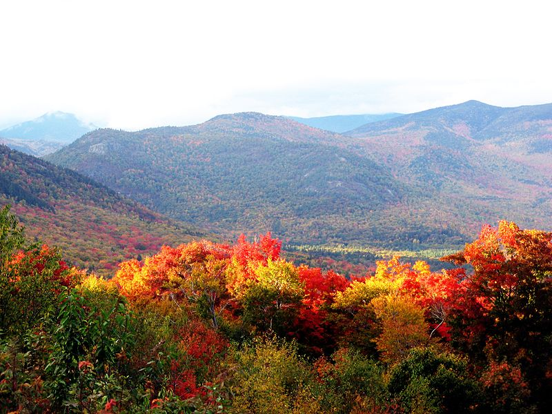 Description English: the forests in new hampshire in autumn Date	9 October 2009 Source	Own work Author	Someone35 (CC BY-SA 3.0)