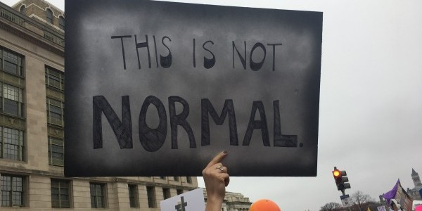"""This is not normal"" Protest Sign in Washington DC, Photo by Heron"