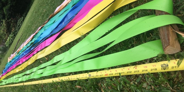 Measuring out our Maypole Ribbons ~Heron Michelle