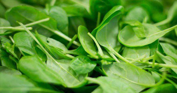 Spinach CC0 Public Domain - Pixabay