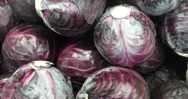 Purple Cabbage CC0 Creative Commons - Pixabay