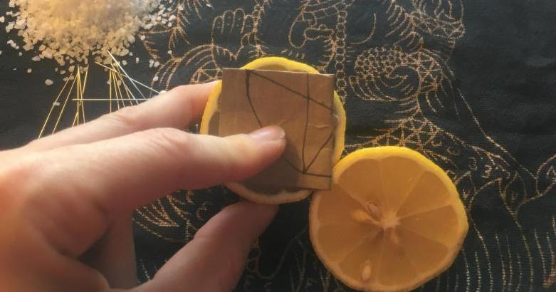 Folded Intention Paper placed between Lemon Halves - Photo by Heron Michelle