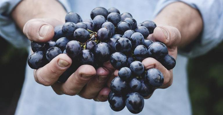 Lammas Group Ritual: Sharing the Grapes of Gratitude - Witch on Fire