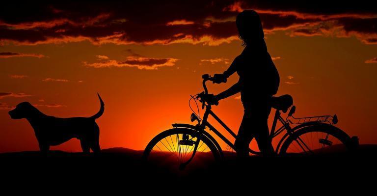 Child, bicycle, dog at sunset