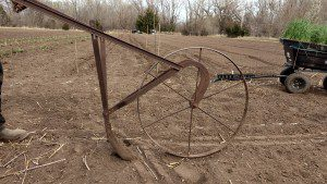 old cultivator