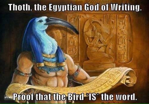 The Bird is the Word