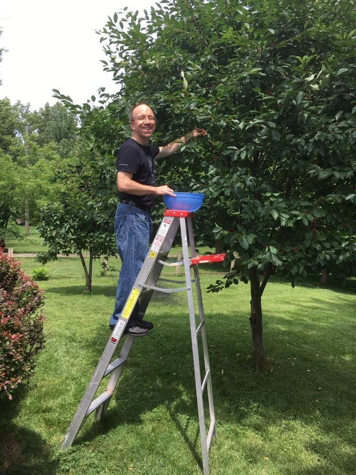 Cherry picking 2017-06-17 18.39.03