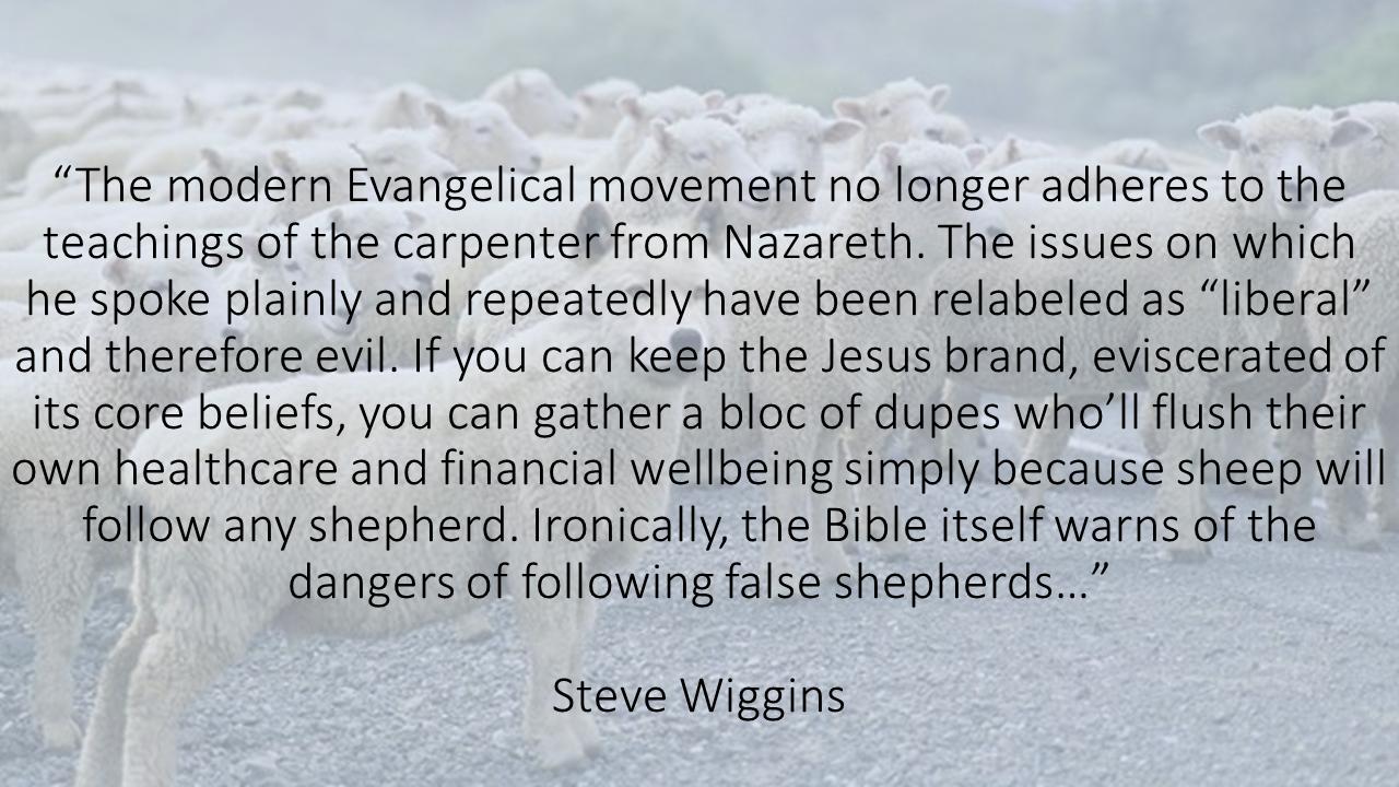 False shepherds
