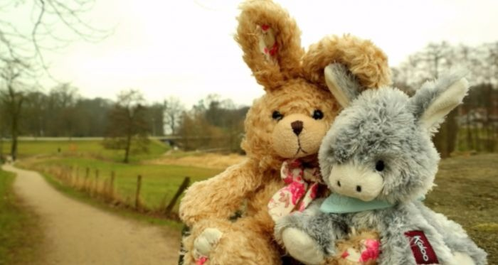 Two fluffy stuffed animals sitting in front of a winding country road.