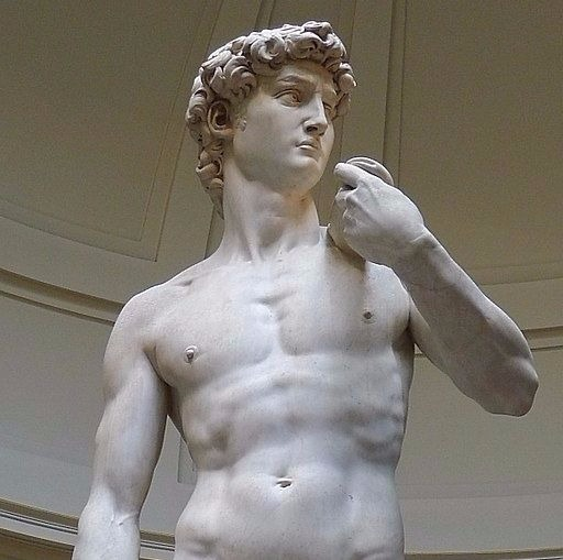 Image of David by Michelangelo a perfect specimen of masculinity.