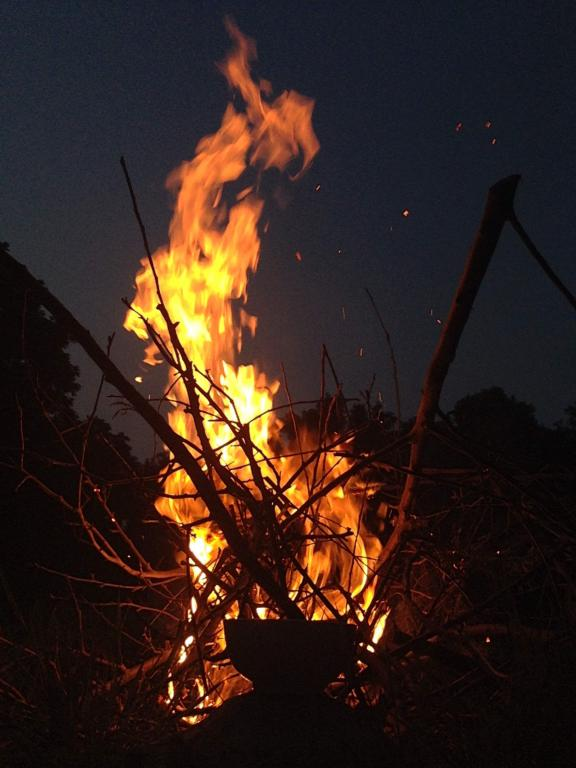 A fire swirls upward, thin twigs and brush crisscross underneath and a bowl in the foreground is backlit by the fire.