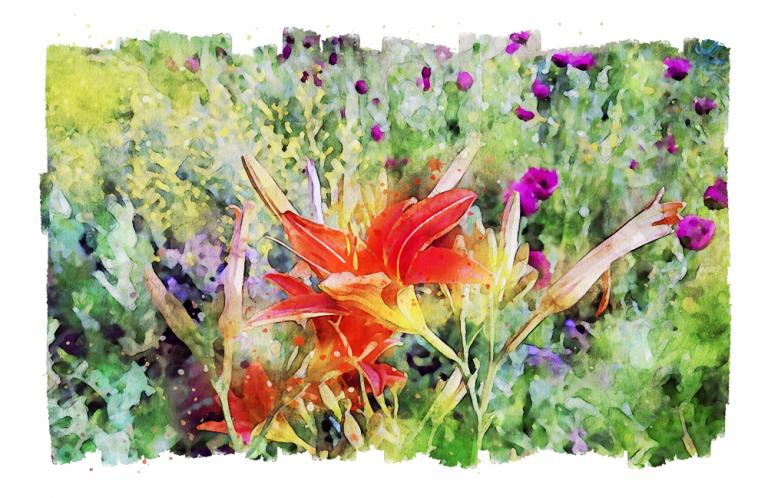 A digital watercolor painting of a daylily spirit with pink poppies and mustard in the background