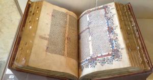 Wycliffe Bible 782 x 411