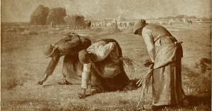 Picking Grain