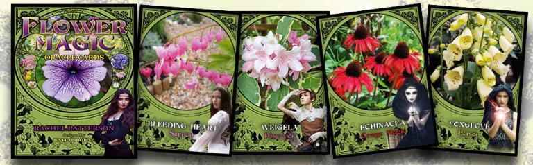 flower magic oracle cards rachel patterson