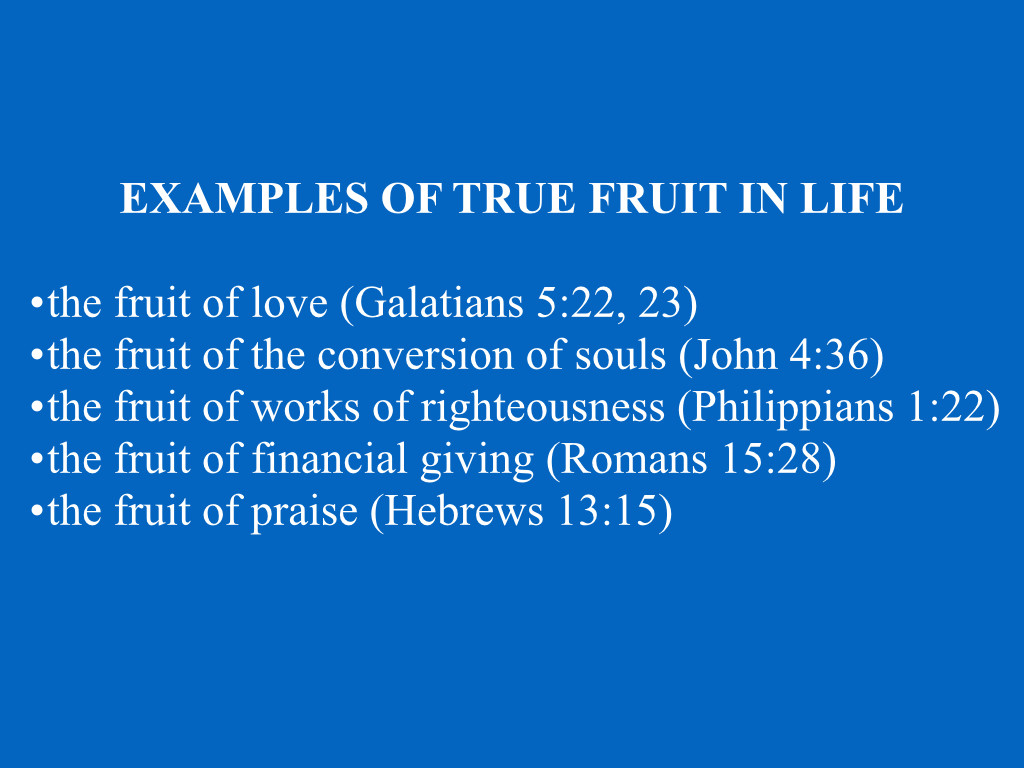 Mark 11:12-26 Living a Fruitful Life | Jim Erwin