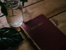 Developing Christian Kindness