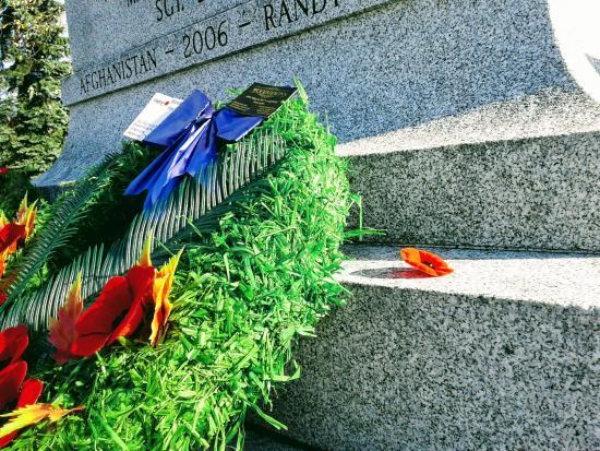Cenotaph poppy