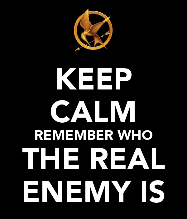keep calm, remember who real enemy is