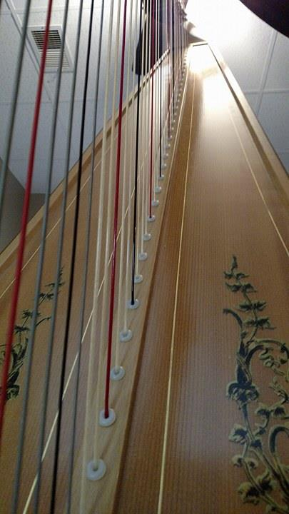 Harp strings, looking up. Photo by Leah D. Schade. All rights reserved.