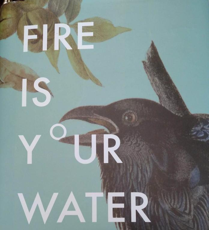 Fire Is Your Water, dust jacket.trimmed