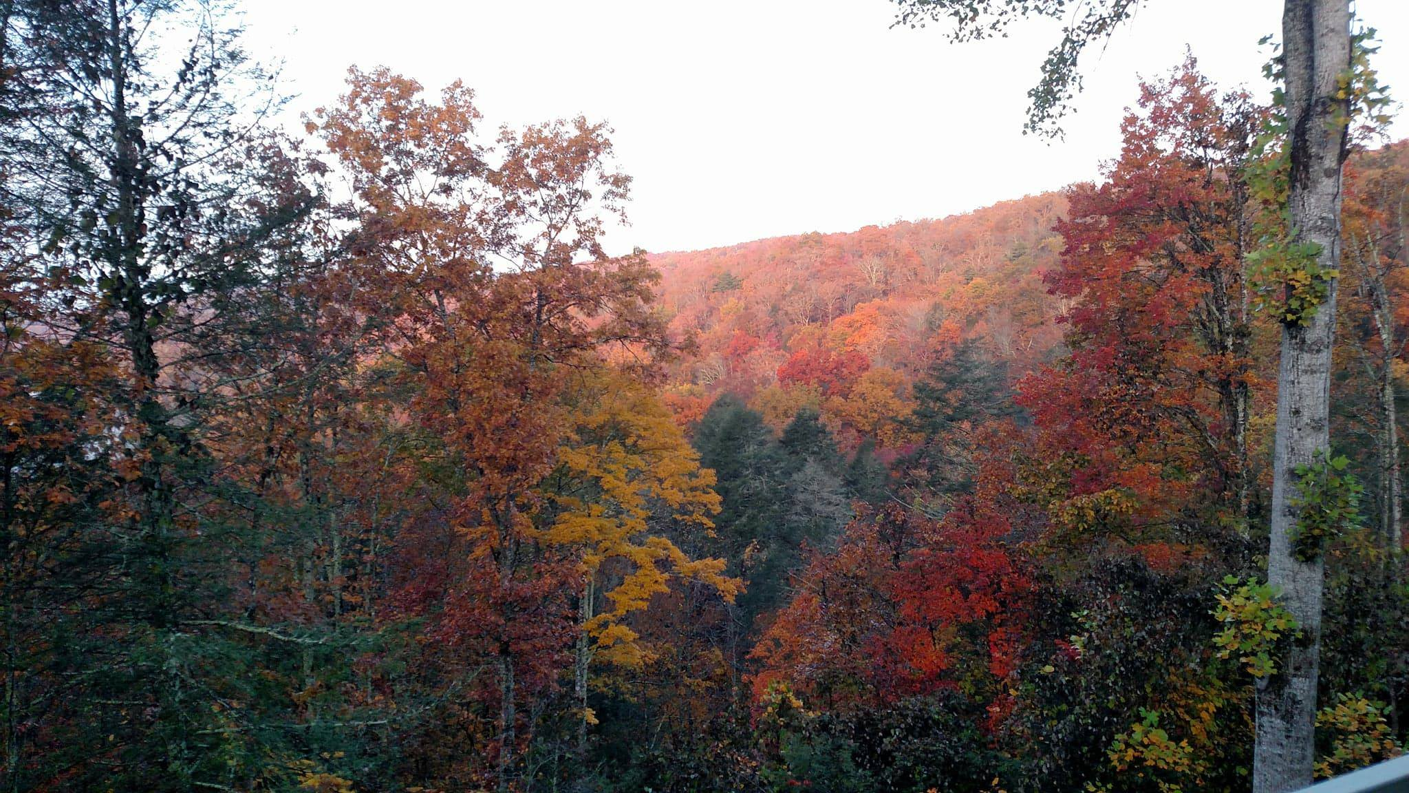 Pine Mountain Ridge in autumn, Kentucky. Photo credit: Leah D. Schade. All rights reserved.