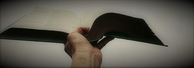 What is 'Good Preaching'? A Sermon about Sermons   Leah D  Schade