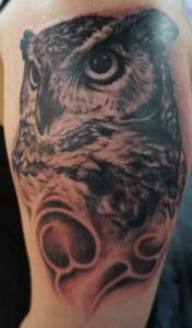 Caleb owl