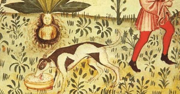 15th Century Manuscript Tacuinum Sanitatis | Public Domain