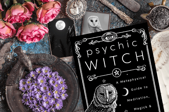 Mat Auryn Psychic Witch Silver Ravenwolf Laurie Cabot Devin Hunter Christopher Penczak