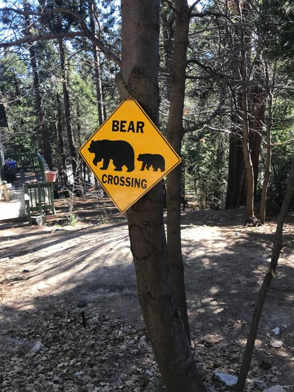 """""""Bear crossing"""" sign we saw near the alleged site of the Bigfoot sighting."""