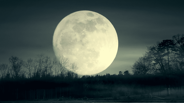 new moon december 13 astrology