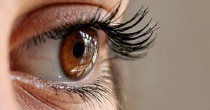 Eye as Window of Psychē