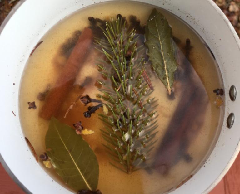 Pine Bay Cinnamon Clove Orange Peel Simmer Pot pagan witchcraft holiday diy