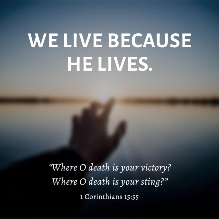 Whether the COVID-19 virus, or 1,000 other unknown enemies of our temporal lives, let us never fear but know we are given life eternal by the living God