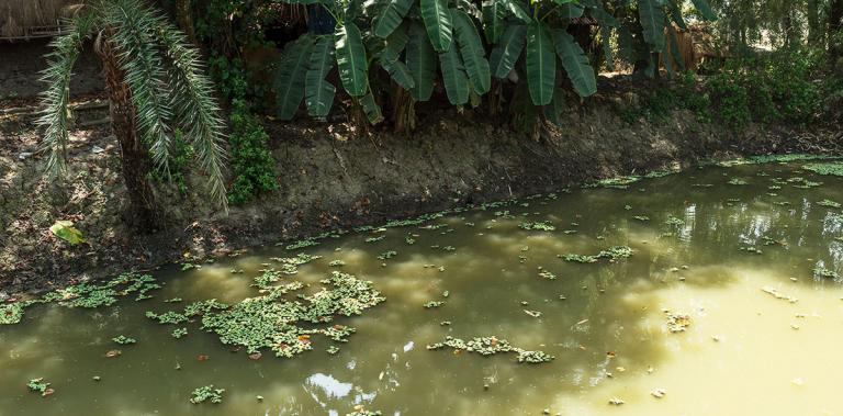 Many people in Asia draw water from smelly, vile ponds - KP Yohannan - Gospel for Asia
