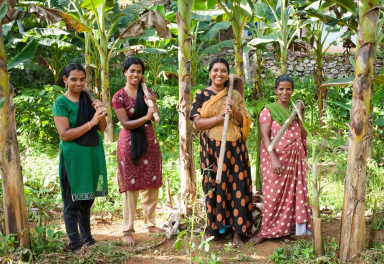 Poverty Reduction: These four women were provided micro-loans. They now work a piece of land together that they are renting with the loan.