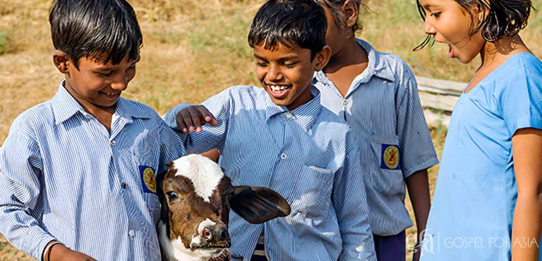 Gospel for Asia (GFA World) founded by Dr. K.P. Yohannan: God has used the gift of a cow to sustain Kalapi's family. Kalapi's children have grown stronger and healthier by drinking the cow's milk.