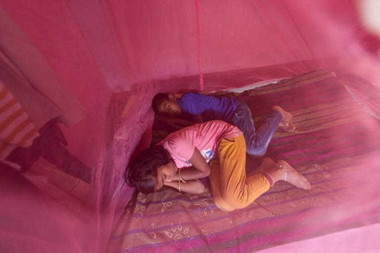 Children sleeping peacefully under the protection of a mosquito net.