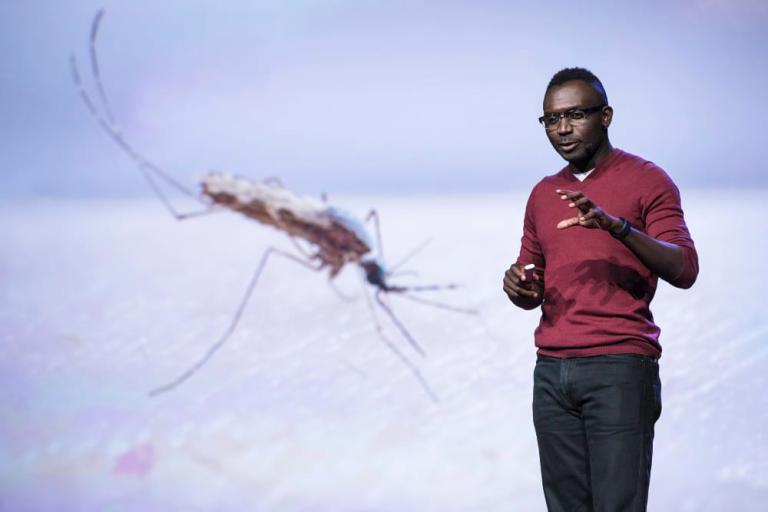 Fredros Okumu speaking at TEDGlobal 2017