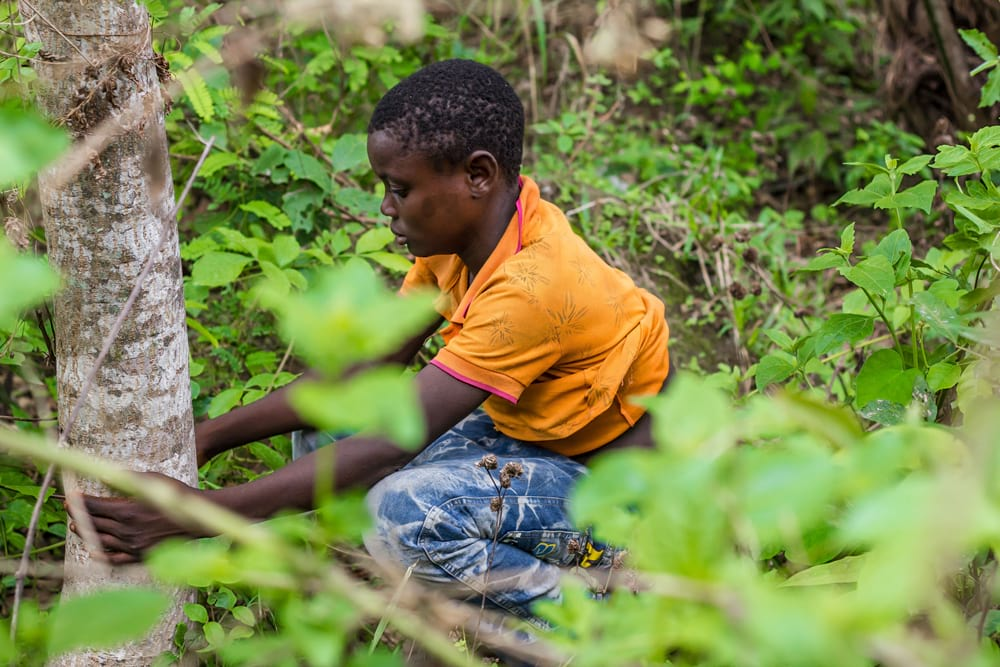 Young boy practifing open defecation