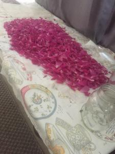 One batch of rose petals ready for use.