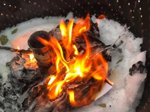 book burning 2