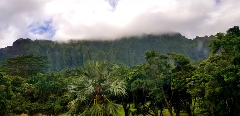 Mountain see