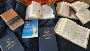 #LightTheWorld with the Book of Mormon