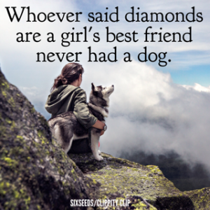5 Of The Best Quotes About Dogs 4 Rpatricio